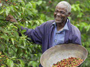 Kenyan Fair Trade Coffee Farmer